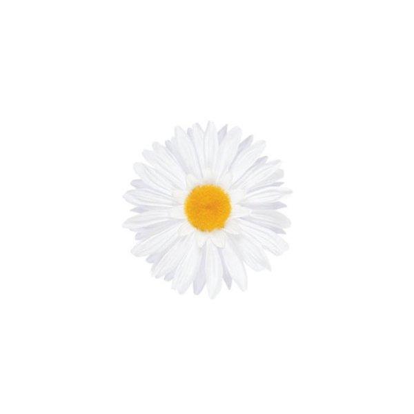 Electra Fahrradschmuck Lenkerblume DAISY verschiedene Farben