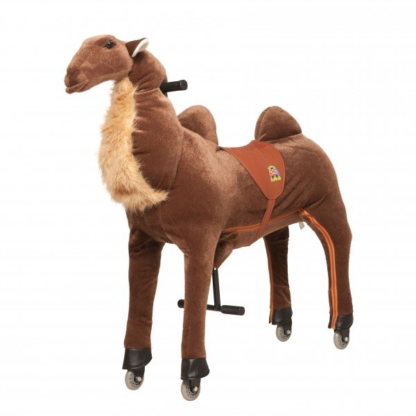 Camel Hadschi small